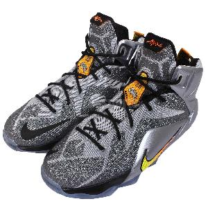 lebron james basketball shoes for boys